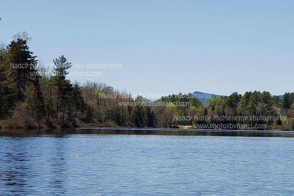 McDaniels Marsh, Enfield NH,  May 20, 2020