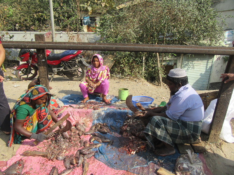 040_Dhaka. Rail Tracks Activities. Fish Market.JPG
