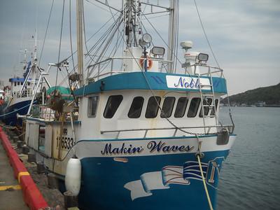 St. John's - Ships in Harbor
