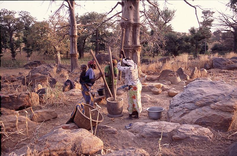Amani village