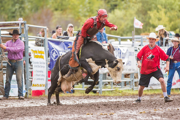 Steer riding Smithers 2016