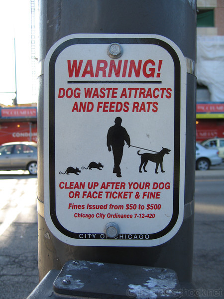 Warning: Dog waste attracts and feeds rats