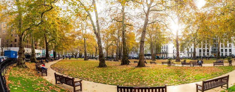 Berkeley Square (pronounced Barkley Square) in Mayfair.