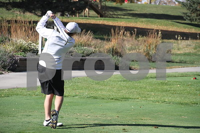 Fort Dodge boys district golf