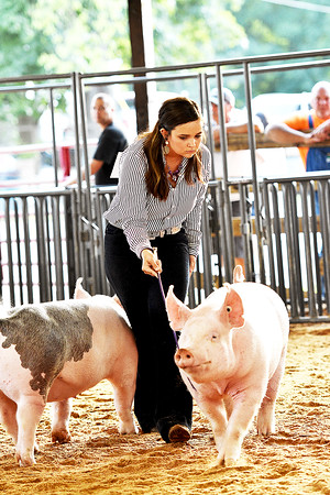 Swine Showmanship 8-13-2019