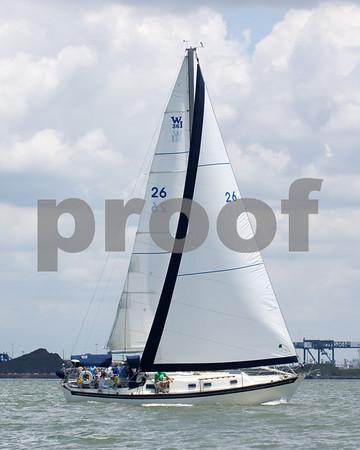 """Seabiscuit""- Steve Leonardo- Sail #26"