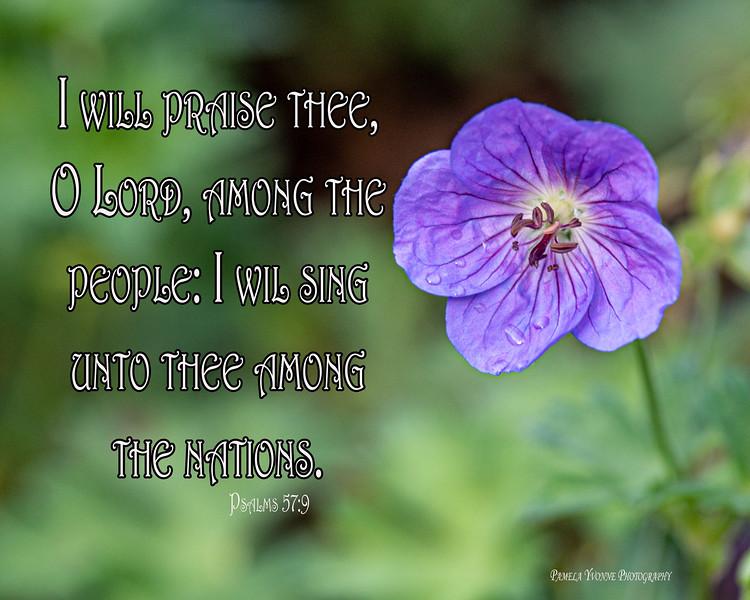 Psalms 57 9.jpg
