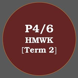 P4/6 HMWK T2