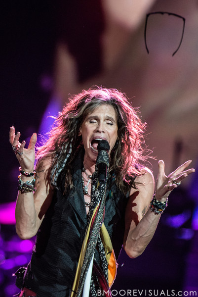 Steven Tyler of Aerosmith performs on December 11, 2012 during The Global Warming Tour at Tampa Bay Times Forum in Tampa, Florida