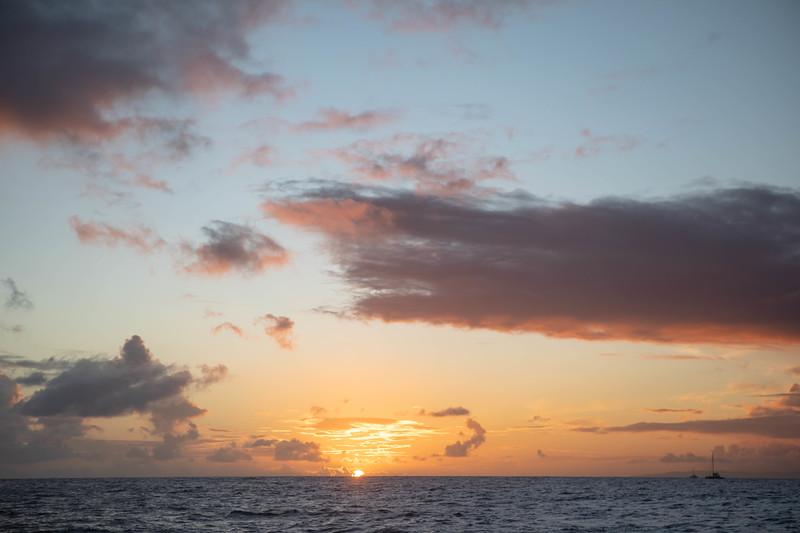 kvb fam holo sunset-117.jpg