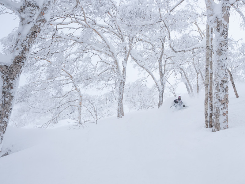 Deep turns in Asahidake backcountry. Skier: Emmanuel Demers