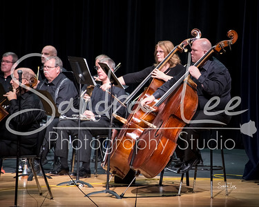 Great Lakes Chamber Orchestra Concert Photography October 2017