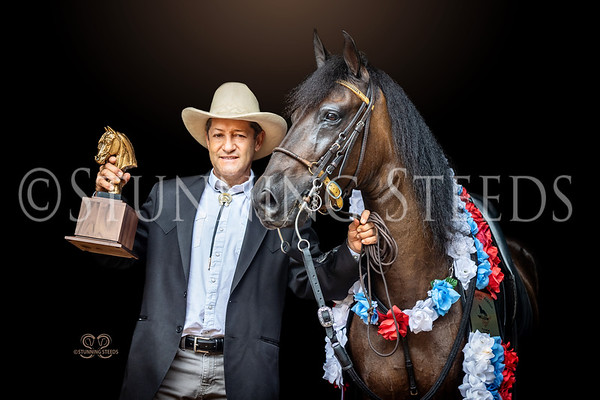 124 Pleasure Geldings Championship