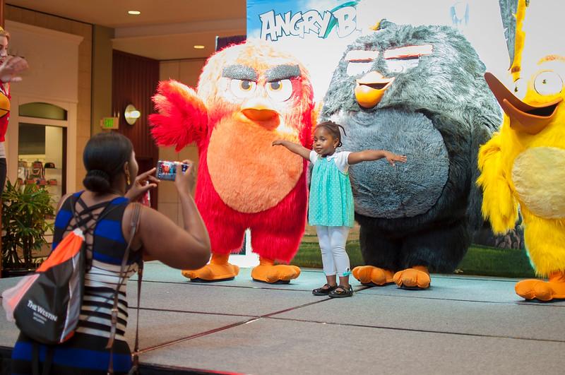Angry Birds StoneCrest Mall 96.jpg