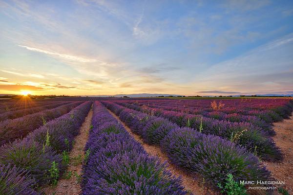 Provence - Côte d'Azur