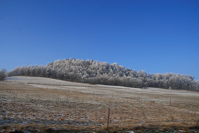 2007-12-26 Lanskroun Hora