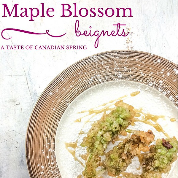 It_s_so_tough_to_name_truly_Canadian_food_but_when__chef_rouge_made_maple_blossom_beignets_with_smoked_maple_syrup_I_thought_it_was_a_taste_of_Canadian_spring.__Recipe_link_is_on_my_profile..jpg