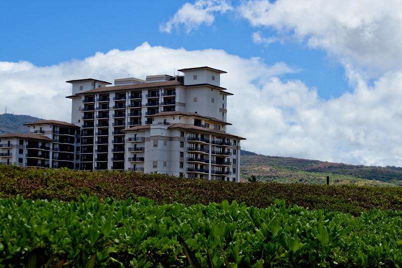 Journey into Oahu Photograph 21