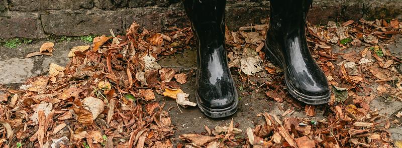 Botas y hojas