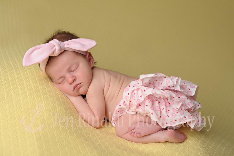 Ava Newborn 1/13/15