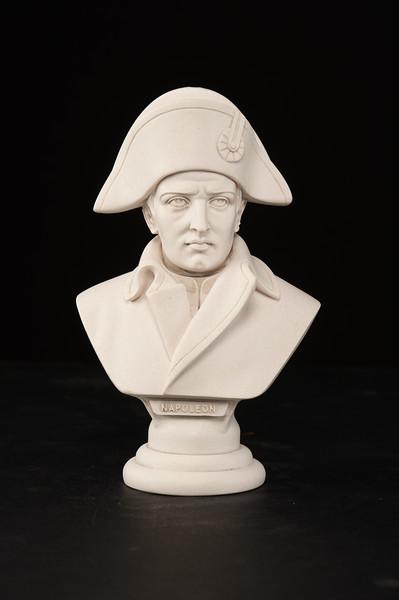 Napoleon-450.jpg
