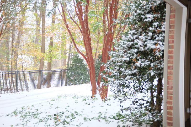 Theodore - First Snow Days