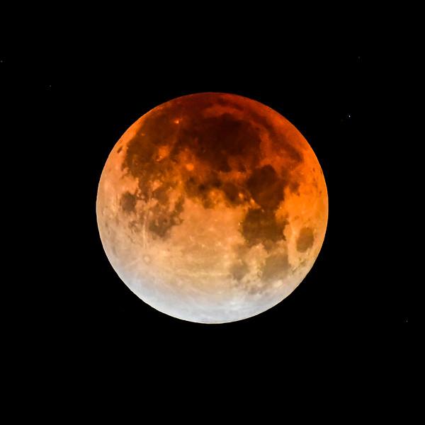 Lunar Eclipse-9.jpg