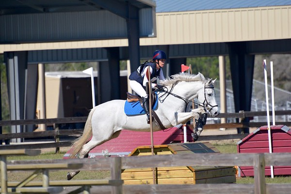 Ocala Winter II Horse Trials, Feb 2017
