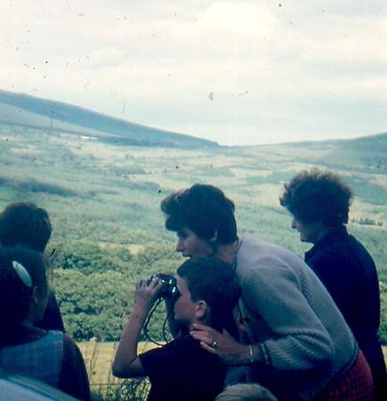 19690049.jpg