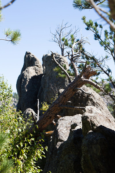 05_Needles Highway_South Dakota-31.jpg