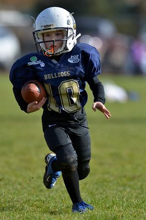Bulldogs Gold vs. Rebels Black Tiny Mite Pop Warner Football