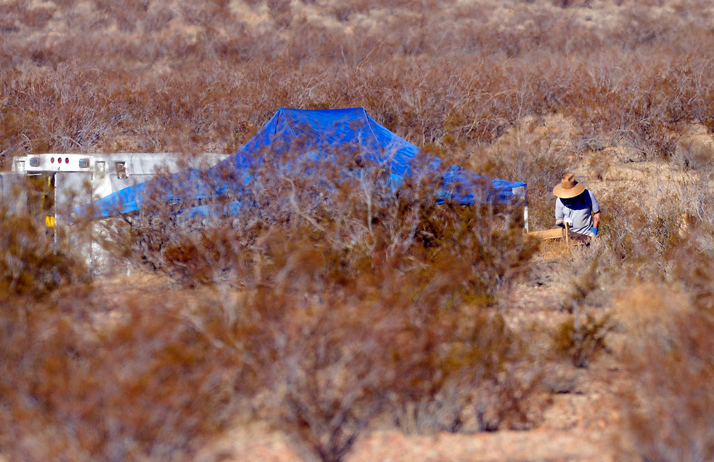 . San Bernardino County Sheriff detective sifts through dirt looking for possible remains near a scene off of Quarry Road, near Interstate 15, in the desert north of Victorville Wednesday morning November 13, 2013 after multiple skelton remains were found. The investigation is on going.   (Will Lester/Inland Valley Daily Bulletin)