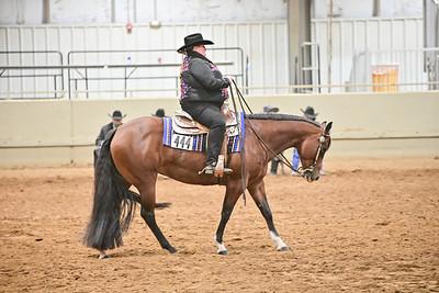 Amature Horsemanship