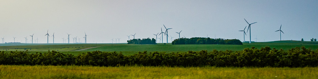 Dozens of wind turbines dot bean fields that stretch as far as the eye can see.