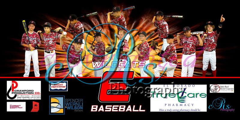 2014 Wildcat Baseball