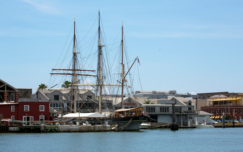 We set out in our Dolphin Watch boat and look back a the 3-masted sailing-ship Elisa.