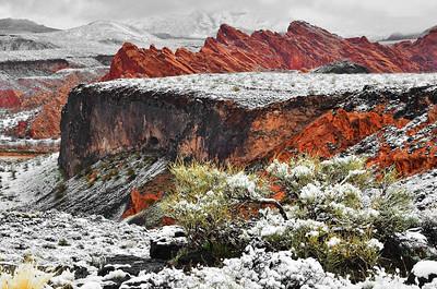 Southwestern Utah / Red Cliff Desert Reserve