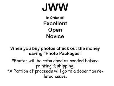 10-02-10 DPCA JWW Agility: Ex, Opn, Nov