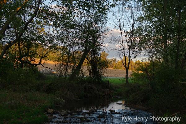 Mill Creek Preserve