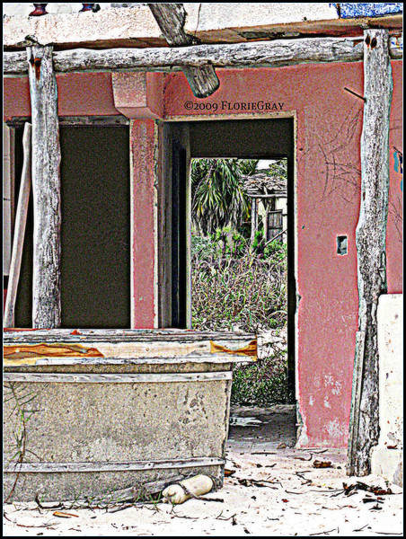 After the Hurricane  ©2009 FlorieGray