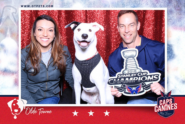 Olde Towne Pet Resort Washington Capitals Watch Party in Sterling, VA