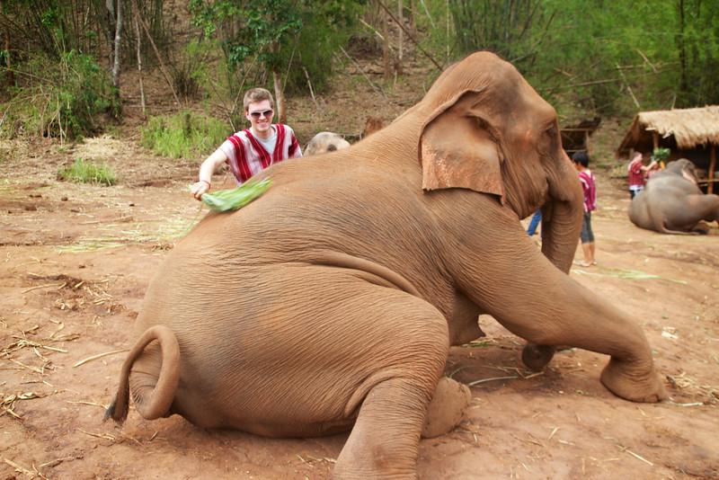 Roewe_Thailand 94.jpg