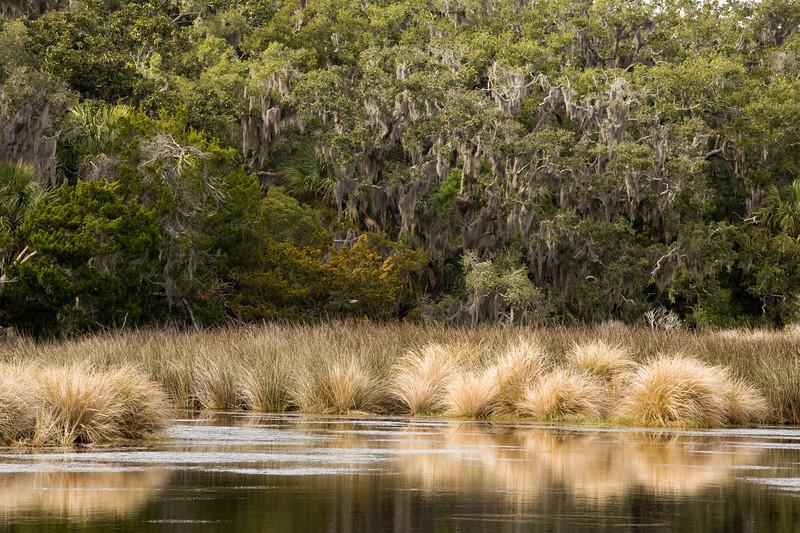 Wood Duck Pond
