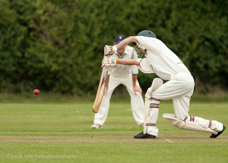 110820 - cricket - 238-2.jpg