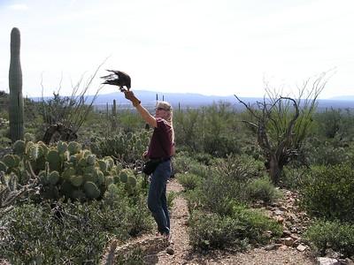 2005.03 Tucson, Arizona