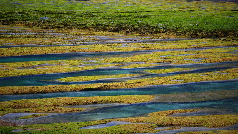 Tide pools, Valdes Peninsula, Patagonia, Argentina.