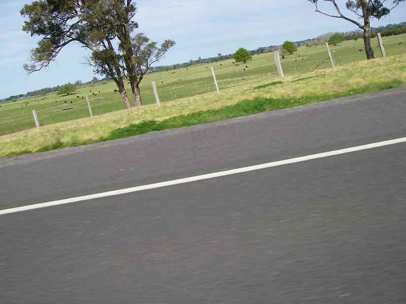 Sydney trip and Mirimbula 014.JPG