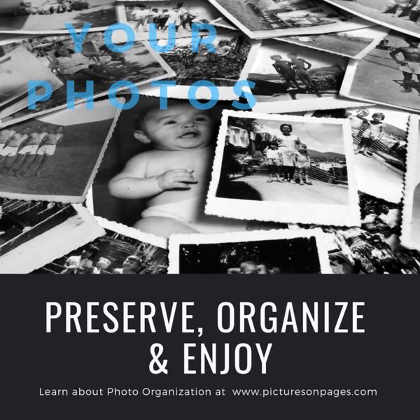 Preserve, Organize & Enjoy #1.png