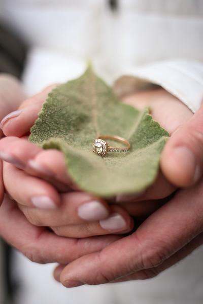 D + A Engagement (75).JPG