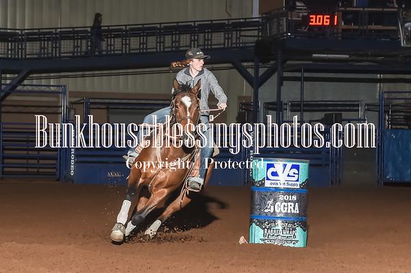 NOVICE HORSE & RO